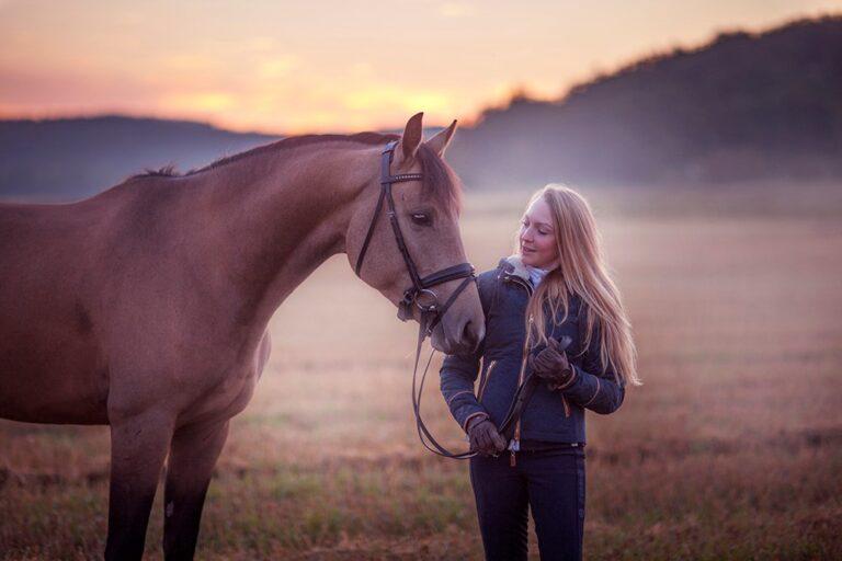 Saga häst
